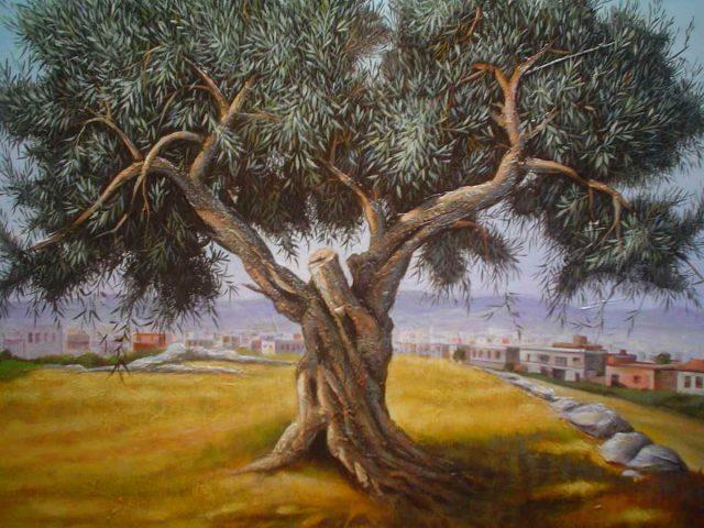 olive_blog